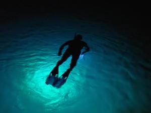 73 Nacht snorkeling