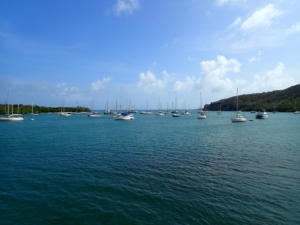 14 Prickly Bay