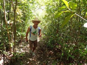(32) Mangrove wandeling