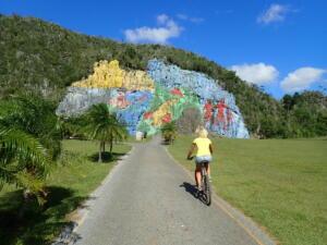 Omgeving Vinales. Muurschildering 100 x 70 meter. Mural de Prehistorica