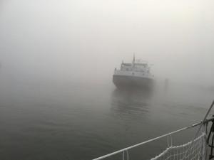 02 - Mist smorgens in Sambeek