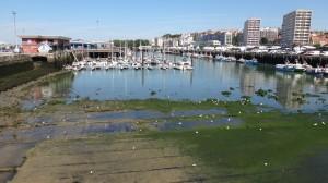 groot getijdenverschil in de haven van Boulogne
